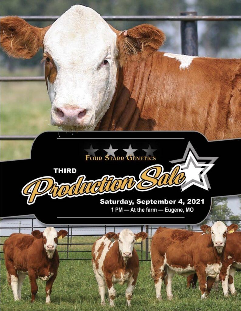 cattle sale catalog